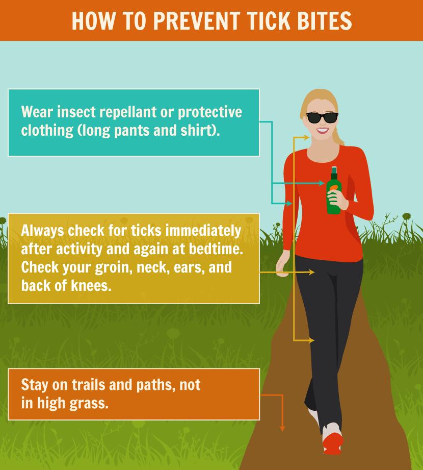 How to Prevent Tick Bites