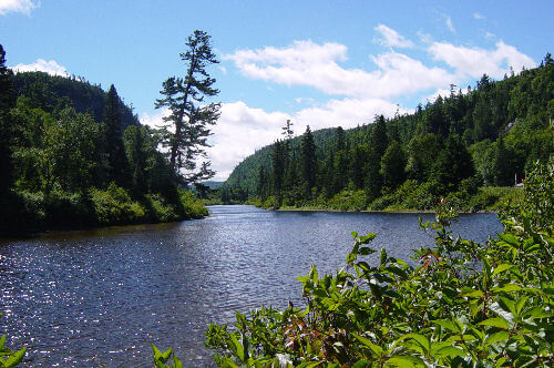 Agawa  River Ontario Canada Photograph by Dustin M. Ramsey