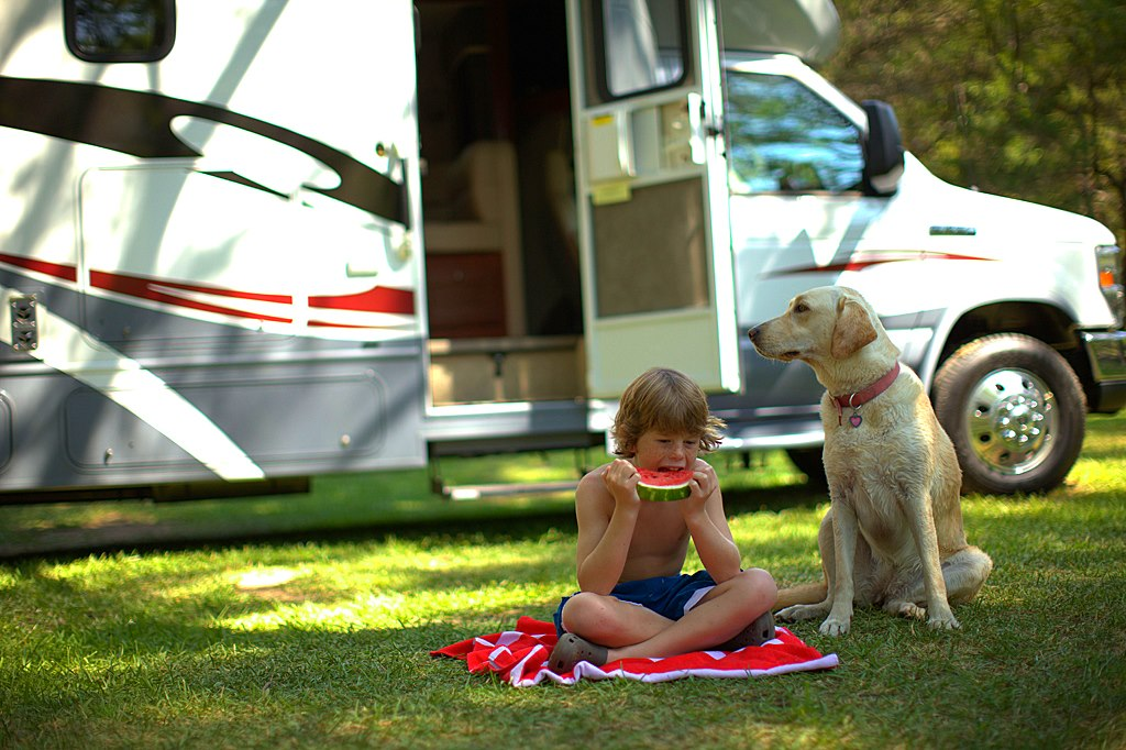 Books That Will Make RVing With Your Dog Easier