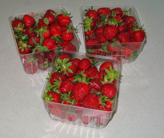 Michigan Strawberries