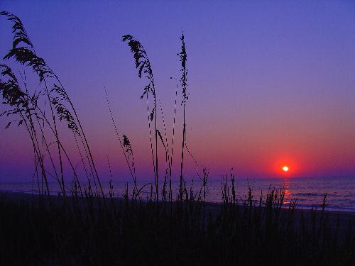 Myrtle Beach South Carolina Sunrise Photo by Moofpocket