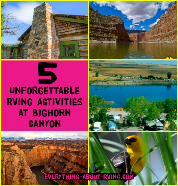 5 Unforgettable RVing Activities at Bighorn Canyon