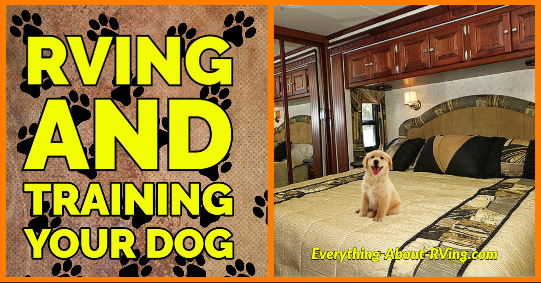 RVing and Training Your Dog
