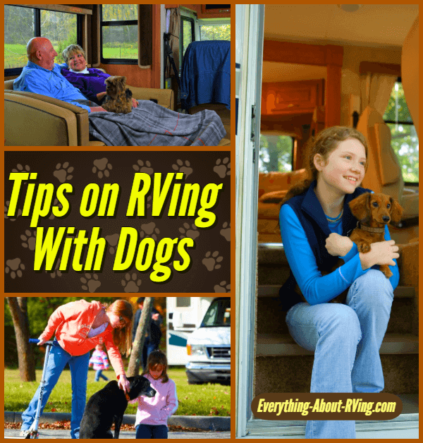 Tips on RVing With Your Dog