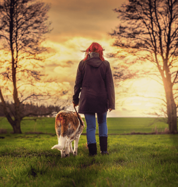 Seeing the Great Outdoors With Your Dog
