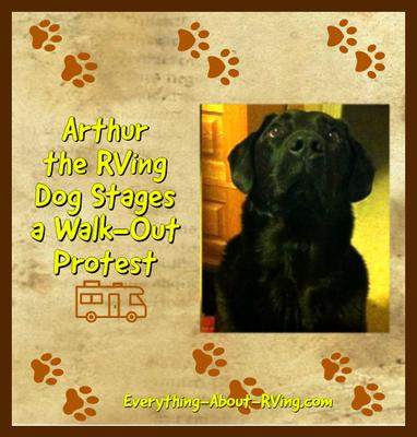Arthur the RVing Dog Stages a Walk-Out Protest