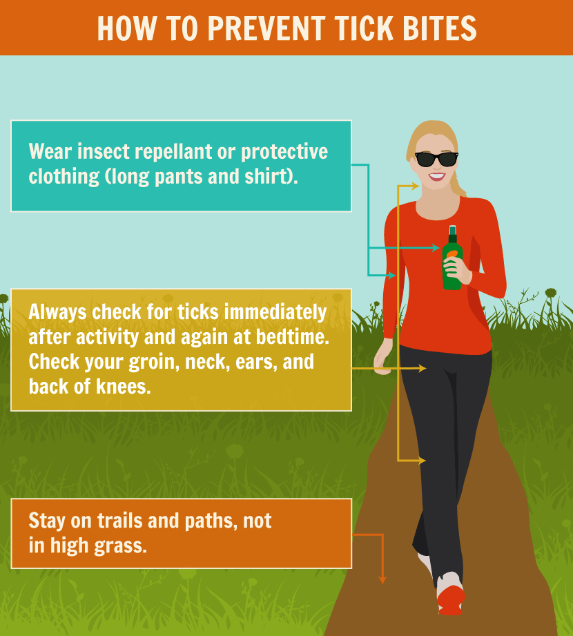 How to Prevent Tick Bites