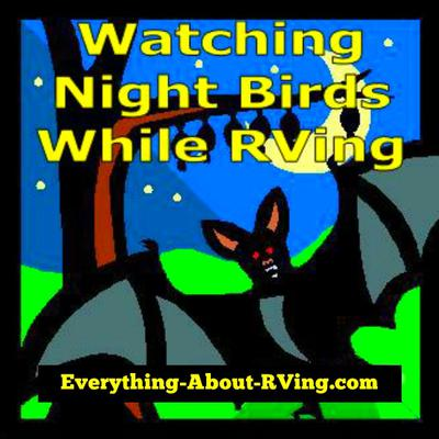 Watching Night Birds While RVing