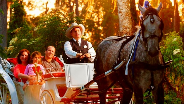 Carriage Ride at Disney Worlds Fort Wilderness Resort and Campground