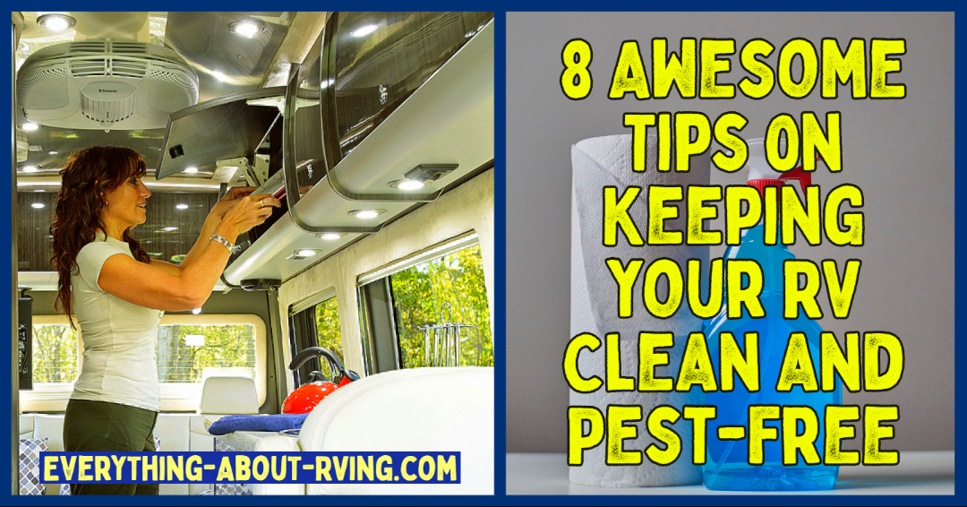 8 Awesome Tips on Keeping your RV Clean and Pest-Free