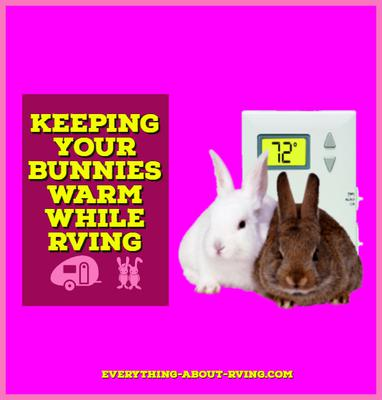 Keeping Your Bunnies Warm While RVing
